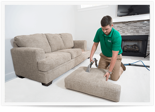Upholstery Cleaning raleigh nc