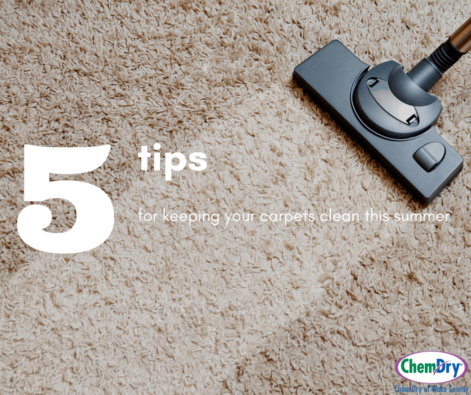 5 tips for keeping your carpet clean this summer chem-dry of wake county